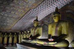 Enkele van de honderden Boeddhabeelden in Dambulla